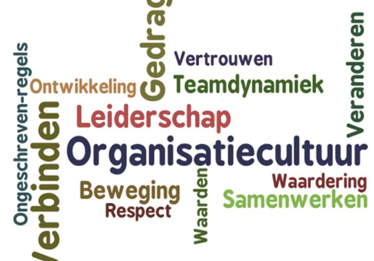organisatiecultuur.png